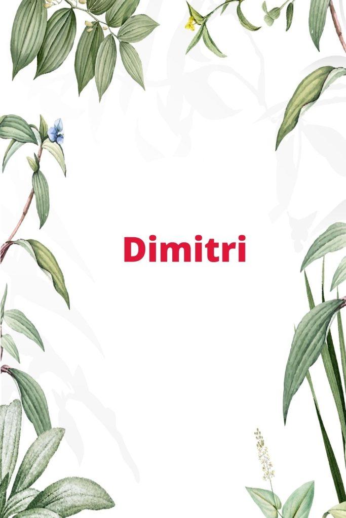 Dimitri prenom garçon slave